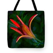 Lily 4 Tote Bag