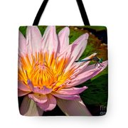 Lily And Dragon Fly Tote Bag by Nick Zelinsky