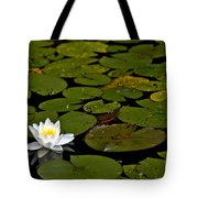 Lily And Pads Tote Bag
