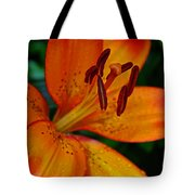 Lily Closeup Tote Bag