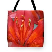 Lily Eyes Tote Bag