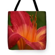 Lily In The Morning Tote Bag