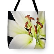 Lily In Winter Tote Bag