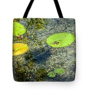 Lily Leafs On The Water Tote Bag