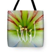 Lily -lilium Tote Bag