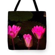 Lily Night Time Tote Bag