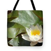 Lily Of Sydney Tote Bag