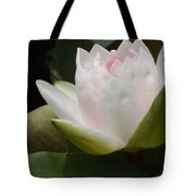 Lily On Her Wedding Day Tote Bag