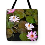 Lily Pad Haven Tote Bag