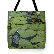 Lily Pad With Bird2 Tote Bag