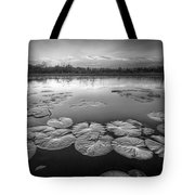 Lily Pads In The Glades Black And White Tote Bag