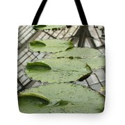 Lily Pads With Reflection Of Conservatory Roof Tote Bag