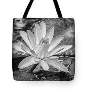 Lily Petals - Bw Tote Bag