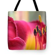 Lily Photo - Flower - Rusty Red Tote Bag