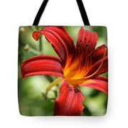 Lily Red  Tote Bag