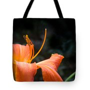 Lily Showing Pistil And Anthers Tote Bag