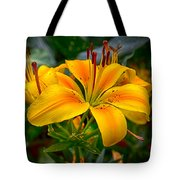 Lily Sunshine Tote Bag