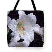 Lily With Rain Droplets Tote Bag
