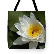 Lily's Sweet Visitor Tote Bag