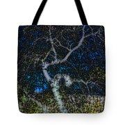 Limned Desert Tree Tote Bag
