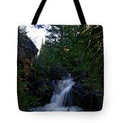 Lime Creek Tote Bag