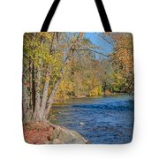 Lime Kiln Park   Tote Bag