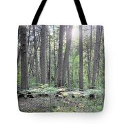 Limerick Fern Understory Tote Bag