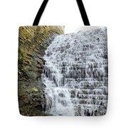 Limestone Falls 2 Tote Bag