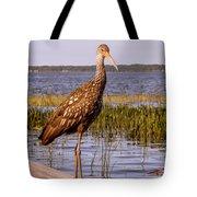 Limpkin Bird Tote Bag