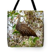 Limpkin In A Tree Tote Bag
