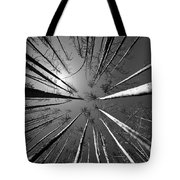Line Creek Burn Area 8 Bw Tote Bag by Roger Snyder