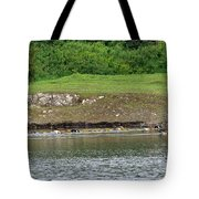 Line Dance Tote Bag by Sharon Talson