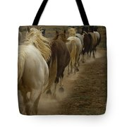 Line Of Mares Tote Bag