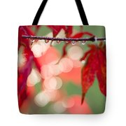 Line Of Reflections Tote Bag by Anne Gilbert