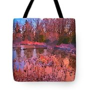 Linear Abstraction Of Pond Tote Bag