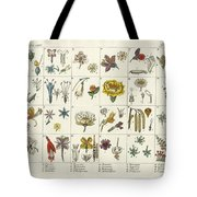 Linne's Plant System Tote Bag