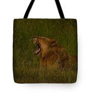 Lion   #1050 Tote Bag