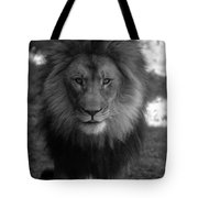 Lion Going For A Haircut Tote Bag