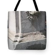Lion Head Fountain Tote Bag