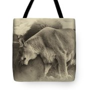 Lion Hugs In Heirloom Finish Tote Bag