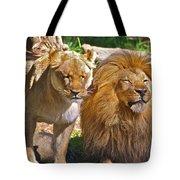 Lion Mates Tote Bag
