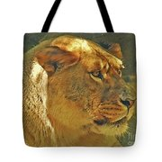 Lioness 2012 Tote Bag