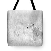 Lioness In Black And White Tote Bag