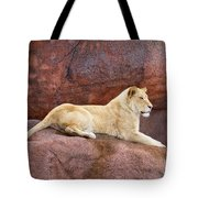Lioness On A Red Rock Tote Bag