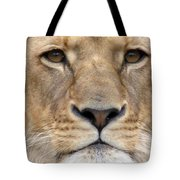 Lioness Portrait Tote Bag