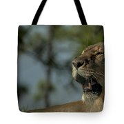 Lioness Voicing Opinion Tote Bag