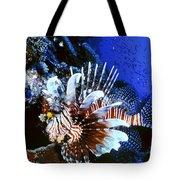 Lionfish 4 Tote Bag