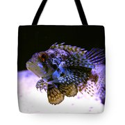 Lionfish Dendriochrius Barberi Tote Bag by Karon Melillo DeVega