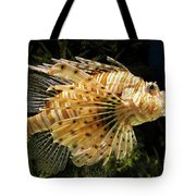 Lionfish Searching For Its Prey Tote Bag