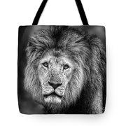 Lion's Eyes Tote Bag